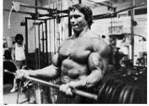 Hatalmas bicepsze mellett jól látható a brachialis, amely a kar oldaláról lehúzódik alá. Arnold rettentő súlyt volt képes behajlítani a kétkaros gyakorlatok során. Azonban vele ellentétben, minden valószínűség szerint előbb jutsz el 6-10 ismétlésben egy alap-súlyig, ha korlátozod edzéseid terjedelmét. A bicepsz edzés gyanánt az alsó fogású húzódzkodás is megteszi